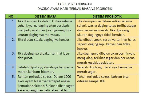 TAbel Perbandingan ayam probiotik